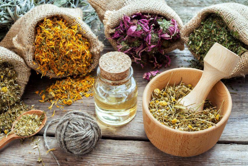 растения для здоровья