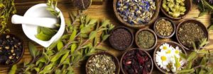 Лекарственные сборы трав в чашах