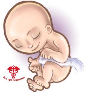 Нормальное внутриутробное развитие ребенка