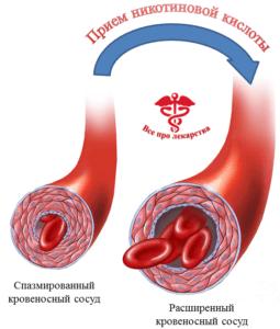 Никотиновая кислота расширяет капилляры