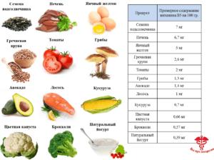 Продукты богатые витамином В5