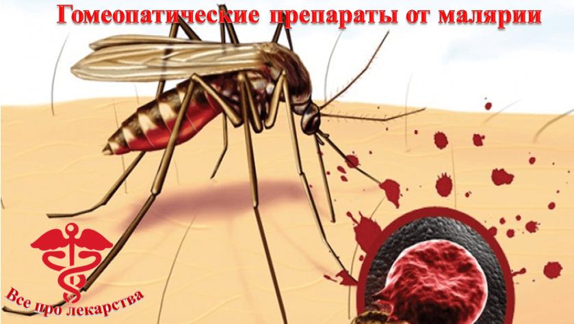 Гомеопатические препараты от малярии